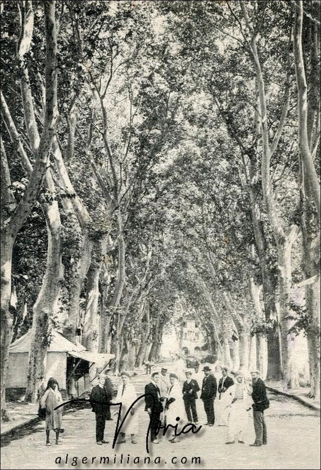 La rue Saint Jean