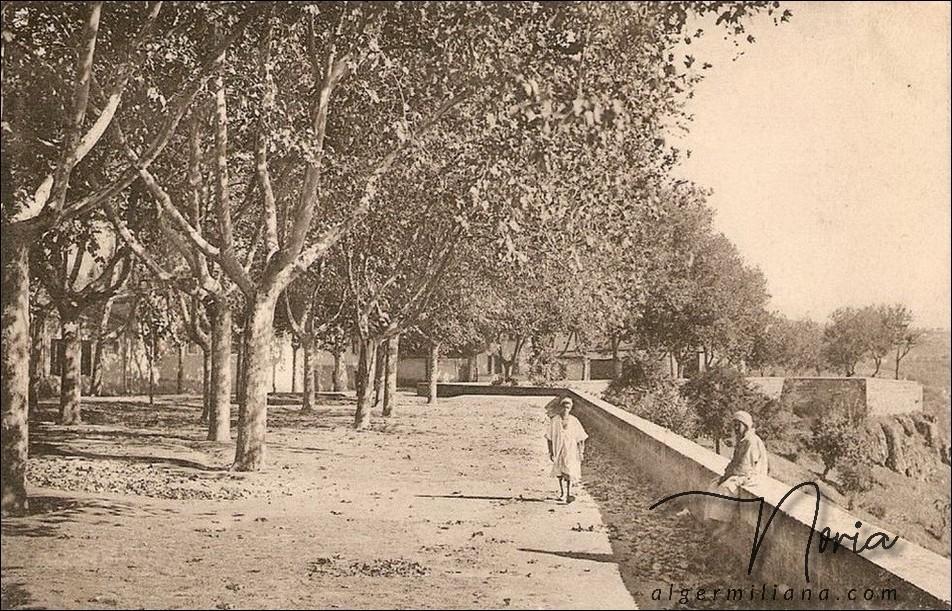 La Pointe des Blagueurs/L'esplanade