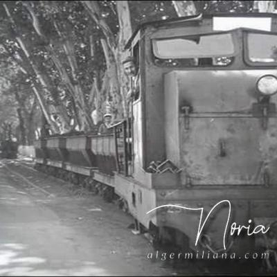 Train de minerai