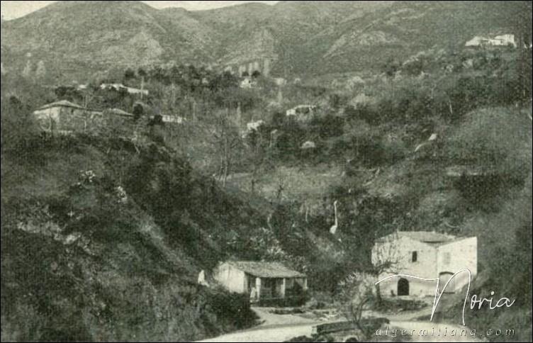 Zougala