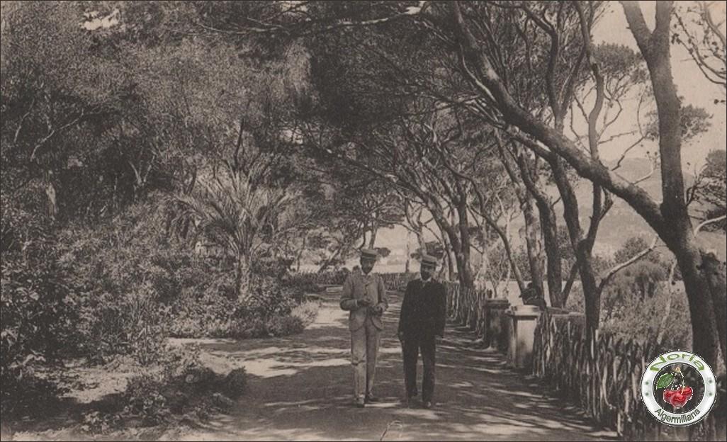 Jardin Marengo/ 1904