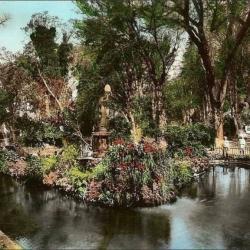 Magenta (Le jardin public)