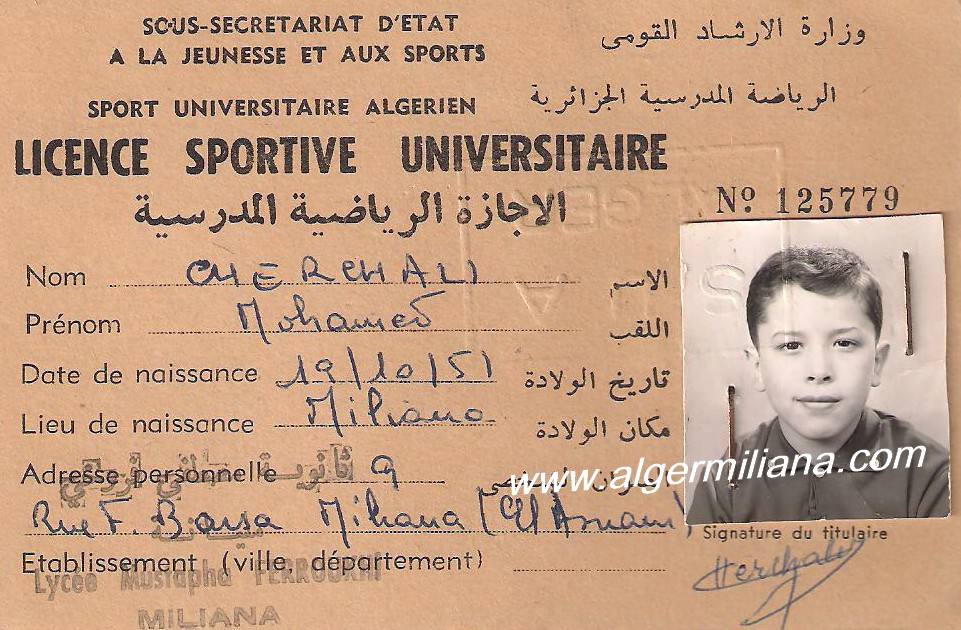 Licencesportive universitaire lycee mustapha ferroukhi miliana 025