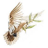 Symbole colombe